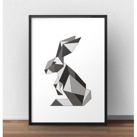 Kolorowy plakat z królikiem