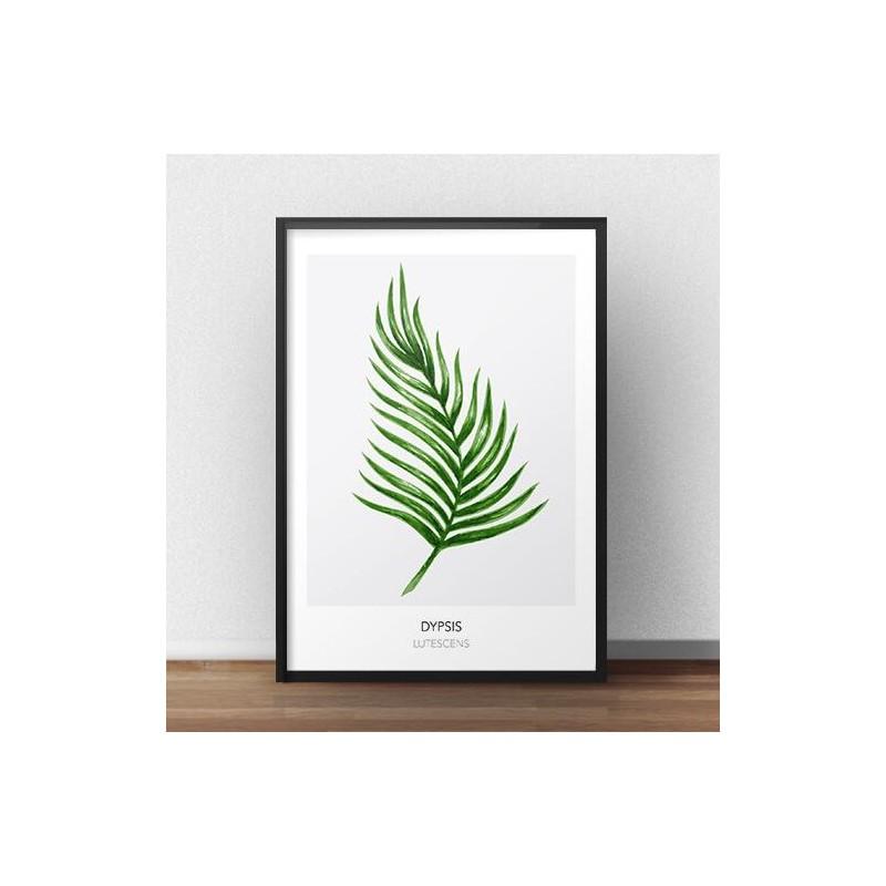 """Skandynawski plakat na ścianę z liściem """"Dypsis lutescens"""""""