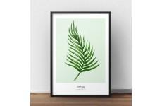 """Skandynawski plakat z zieloną rośliną """"Dypsis lutescens"""" do powieszenia na ścianie"""