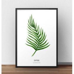 """Kolorowy plakat z liściem palmowym """"Dypsis lutescens"""" na białym tle"""