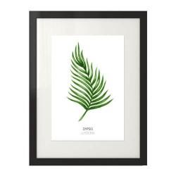Nowoczesna grafika na ścianę z liściem palmowym
