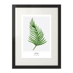 """Nowoczesny plakat na z zielonym liściem """"Dypsis lutescens"""" na szarym tle"""