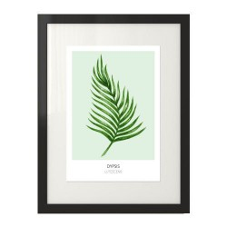"""Skandynawska dekoracja ściany z zielonym liściem palmowym """"Dypsis lutescens"""" na seledynowym tle"""